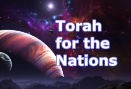 Torah for the Nations picture